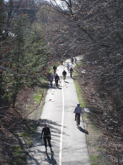 people on the minuteman trail in Arlington, MA