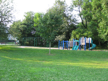 the swing set and play scape at Rindge Park